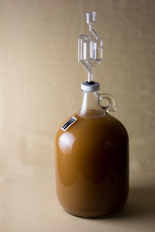 Lambic Beer Starter